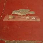 Oplontis la villa de Poppée couloir oiseaux