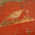 Oplontis la villa de Poppée couloir oiseaux1