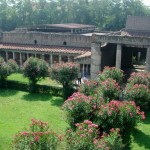 Oplontis-la villa de Poppée vue