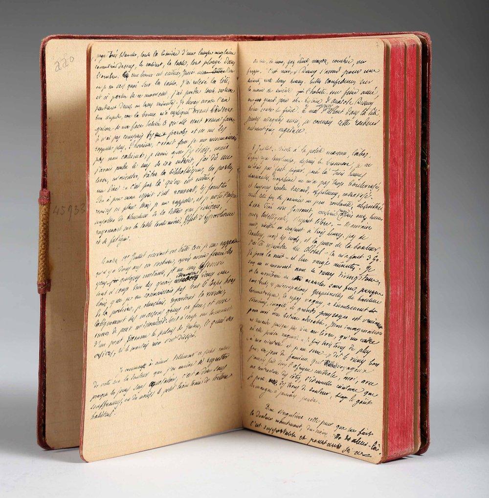 daudet-alphonse-la-doulou-notes-pour-un-livre-de-memoires-juin-1886-avril-1897--133