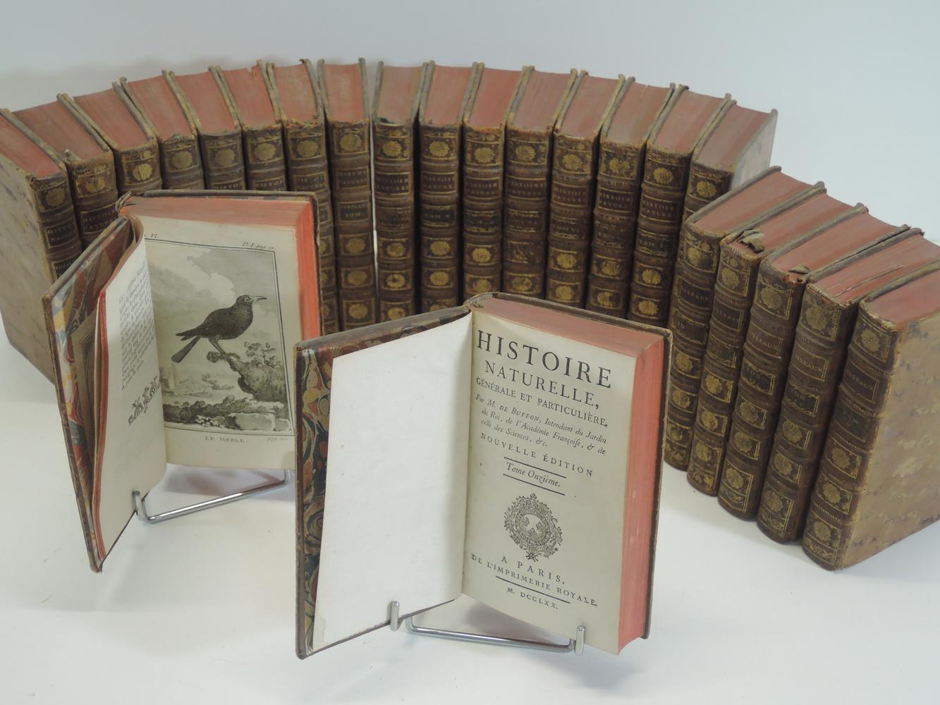 buffon-histoire-naturelle-generale-et-particuliere-nouvelle-edition-en-13-volumes-paris-imprimerie-royale-1769-1770--168